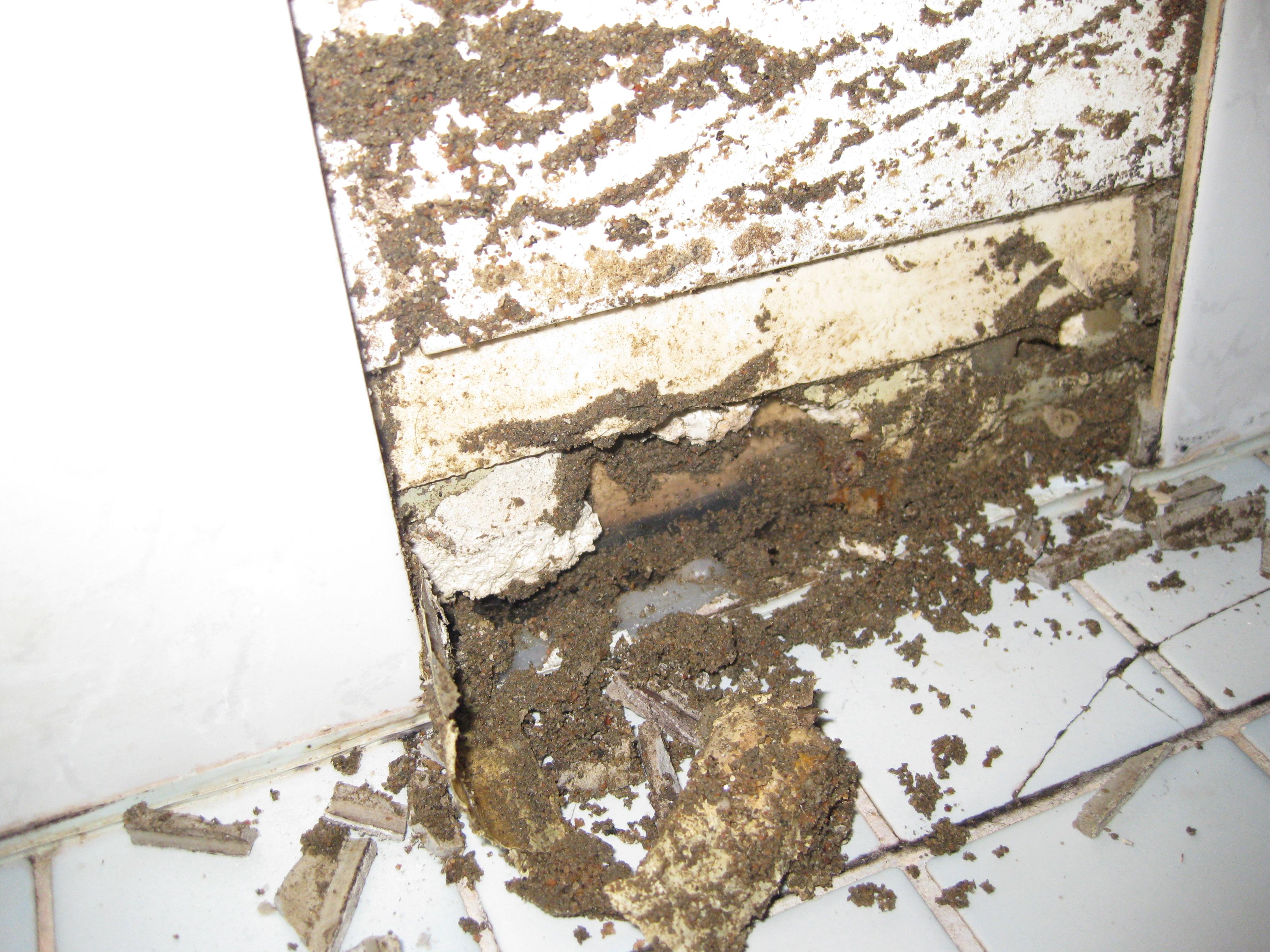 Kylpyhuoneen seinän vaurio